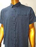 Мужская рубашка,Батал, Amato. AG. 29397-2(s). Размеры: 2XL,3XL,4XL,5XL., фото 4