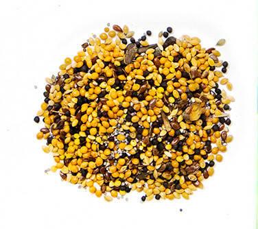 Зерновой корм для муравьев Messor Structor, фото 2