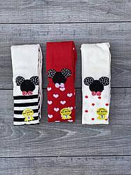 Дитячі колготи бавовна KBS принт мишко для дівчаток 0,1,3,5 років 6 шт. в уп. мікс кольорів