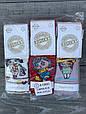 Дитячі колготи бавовна KBS дівчинка для дівчаток 1 рік 6 шт. в уп. мікс із 6 кольорів, фото 2