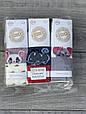 Детские колготы хлопок KBS мышонок для девочек лет 6 шт. в уп. микс 3х цветов, фото 4