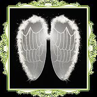 Крылья ангела капрон