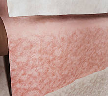 Обивочная влагоотталкивающая ткань Гелекси 13 пиш (GALAXY 13 PEACH)
