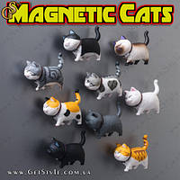 """Магніт на холодильник - """"cat's"""" - 1 шт"""