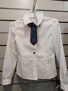 Блузка для девочки Sunny-Bunny 0580101 рост 116