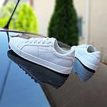 Мужские кеды Calvin Klein (белые) 10234, фото 7