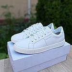 Мужские кеды Calvin Klein (белые) 10234, фото 9