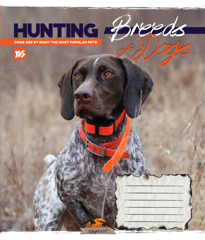 Тетрадь в линию 48 л Yes А5 Hunting dogs микс 4 обложки (762113)