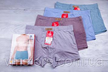 Трусы мужские Vericoh, облегченные, упаковка 2 штуки, размер 4XL