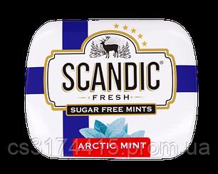 Освежающие драже  Energon SCANDIC без сахара  вкус  Арктическая Мята (14 грамм)