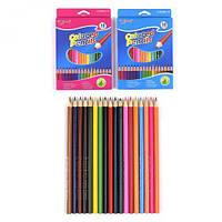 Цветные карандаши (18 цветов) C37047-YL83041-18