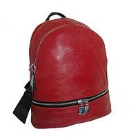Рюкзак молодежный 2 отдела средний размер GS156