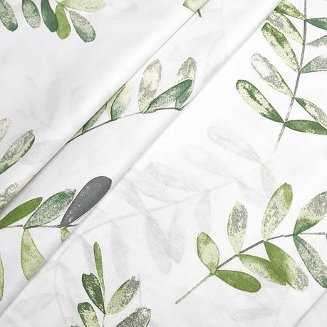 """Турецкая хлопковая ткань ранфорс """"Листочки эвкалипта зеленые на белом"""" 240 см, фото 2"""