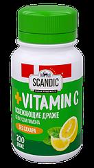 Освежающие драже Energon SCANDIC без сахара со вкусом Лимона с витамином С (52 грамма)