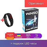 Лампы ксенон WINSO H1 5000K, 85V, 35W P14.5s KET (к-т 2шт.)