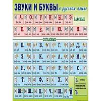 Плакат шкільний: Звуки і літери в українській мові