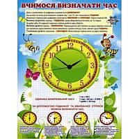Школьный плакат: Учимся определять время