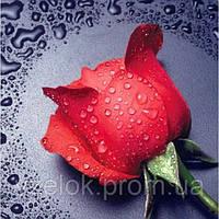 Набір алмазної вишивки Червона троянда