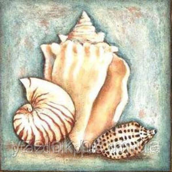 """Набор алмазной вышивки  """"Морские раковины"""""""