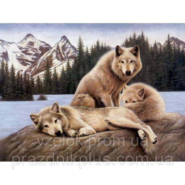 """Набор алмазной вышивки  """"Волки на охоте"""""""