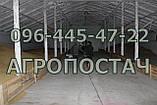 Зерновентилятор аератор зерновий високопродуктивний, фото 4
