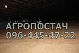Зерновентилятор аератор зерновий високопродуктивний, фото 6