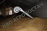Зерновентилятор аератор зерновий високопродуктивний, фото 2