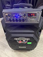 Портативная колонка с микрофонами TMS SL10-08S (USB-BT-2MIC)