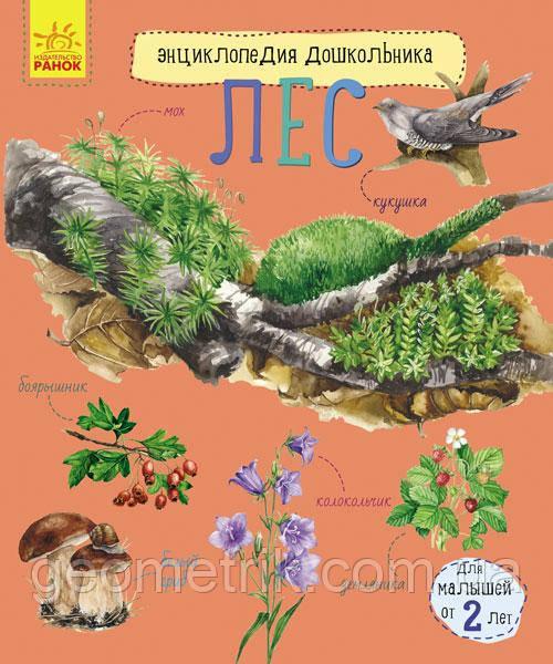 Энциклопедия дошкольника: Лес арт. С614015Р ISBN 9786170936189