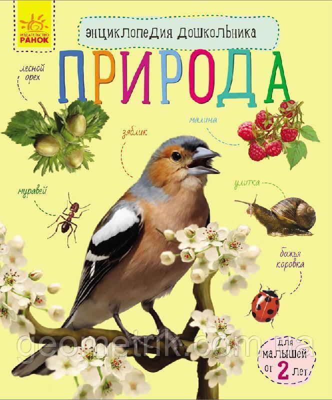Энциклопедия дошкольника (новая): Природа