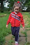 Детские спортивные штаны Микки SmileTime Mickey Cinema, синий, фото 3