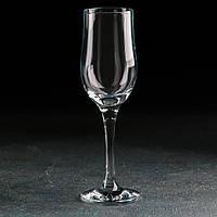 "Бокал для шампанского 200 мл ""Tulipe"" Pasabache."
