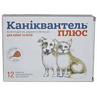 Каниквантель Плюс - таблетки от глистов со вкусом мяса 1 таблетка на 10 кг.веса