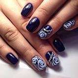 Акриловая пудра для дизайна ногтей 12 штук в наборе, фото 5