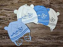 Теплая шапка для мальчика на завязках с ушками   Размер 36-38 см на новорожденных, фото 3