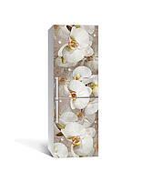 Виниловая наклейка на холодильник Орхидеи и капли росы 02 (самоклеющаяся пленка ПВХ) бежевый 650*2000 мм
