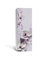 Виниловая наклейка на холодильник Магнолия 02 (самоклеющаяся пленка ПВХ) фиолетовые цветы 650*2000 мм