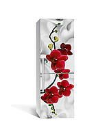 Виниловая наклейка на холодильник Красная орхидея шелк (самоклеющаяся пленка ПВХ) цветы серый 650*2000 мм