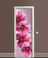 Виниловая наклейка на двери Крупные Розовые Орхидеи (ламинированная пленка ПВХ) цветы 650*2000 мм