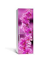 Виниловая наклейка на холодильник Ветка розовых Орхидей самоклеющаяся ламинированная пленка ПВХ цветы орхидеи, фото 1