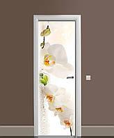 Виниловая наклейка на двери Белая орхидея 03 самоклеющаяся ламинация пленка ПВХ цветы роса Бежевый 650*2000мм, фото 1
