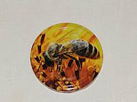 Крышка закаточная твист-офф размер 66 мм Пчела