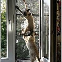 Стальная Сетка рёшетка на окна для защиты домашних животных от выпадения