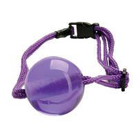 Кляп Japanese Silk Love Rope Ball Gag, Purple, фото 1