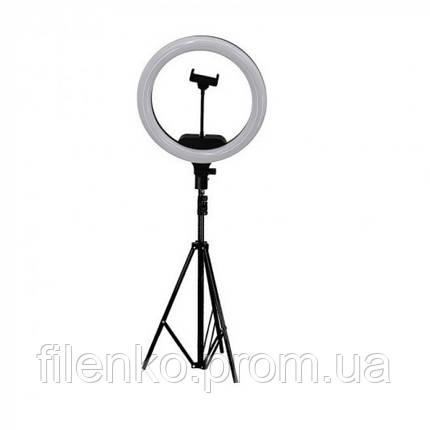 Кільцева лампа зі штативом LED Ring Fill Light AL33 33 см з кріпленням для телефону 220В, фото 2