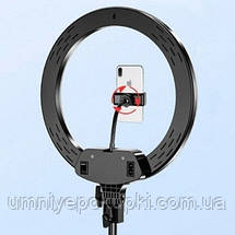 Кільцева лампа зі штативом LED Ring Fill Light AL33 33 см з кріпленням для телефону 220В, фото 3