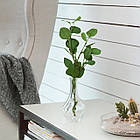 IKEA VILJESTARK ( 003.385.77) Ваза, прозоре скло 17 см, фото 8
