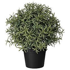 IKEA FEJKA ( 903.821.13) Штучна рослина в горщику 9 см