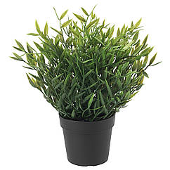 IKEA FEJKA ( 604.339.39) Штучна рослина в горщику  9 см