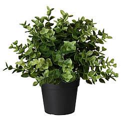 IKEA FEJKA (103.751.59) Штучна рослина в горщику , материнка звичайна 9 см